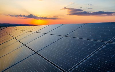 MAI is participating in the world's largest solar power plant project
